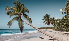 COMBINÉ MARTINIQUE <br>GUADELOUPE & SAINTES<br>DEMI-PENSION